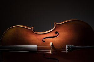Start Giving ArtsinStark Campaign Musical Arts
